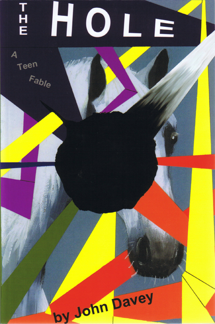 <b><i>      The Hole: A Teen Fable</i> (2008), by John Davey</b>